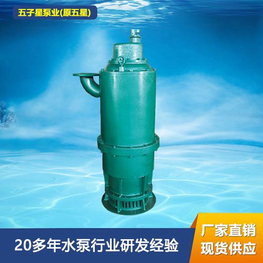 BQS矿用隔爆型排沙排污泵BQS60-100/2-37/N