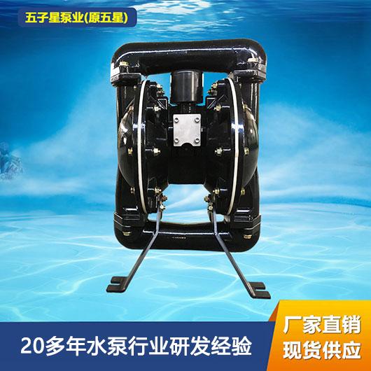 BQG气动隔膜泵 BQG170/0.25