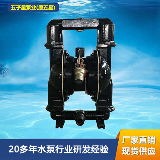BQG气动隔膜泵 BQG200/0.4