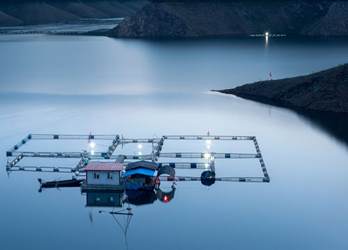 风泵对于水产养殖的特殊性介绍